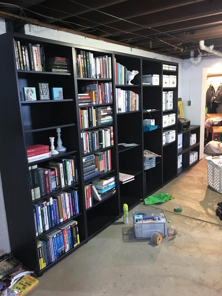 basementbookshelvesmid